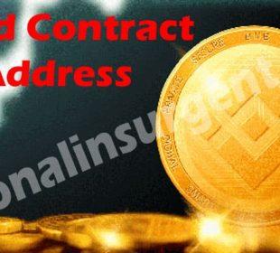 Bnbd Contract Address 2021
