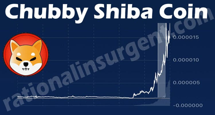 Chubby Shiba Coin (May 2021) A Freshly Released Coin!