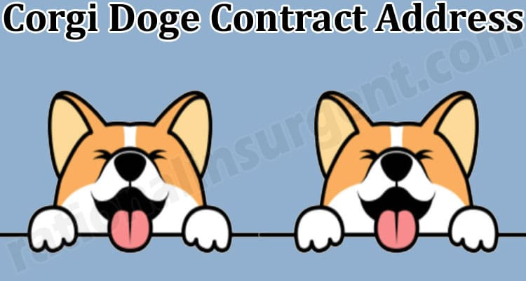 Corgi Doge Contract Address (May) Price, How to Buy