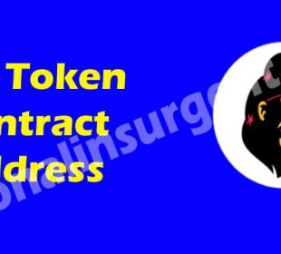 Feg Token Contract Address 2021