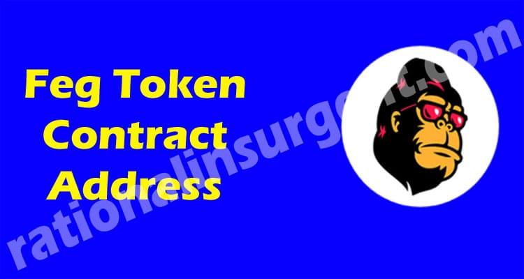 Feg Token Contract Address 2021