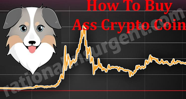 How To Buy Ass Crypto Coin 2021