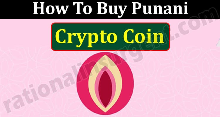 How To Buy Punani Crypto Coin (May 2021) Price, Chart!