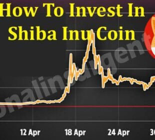 How To Invest In Shiba Inu Coin 2021
