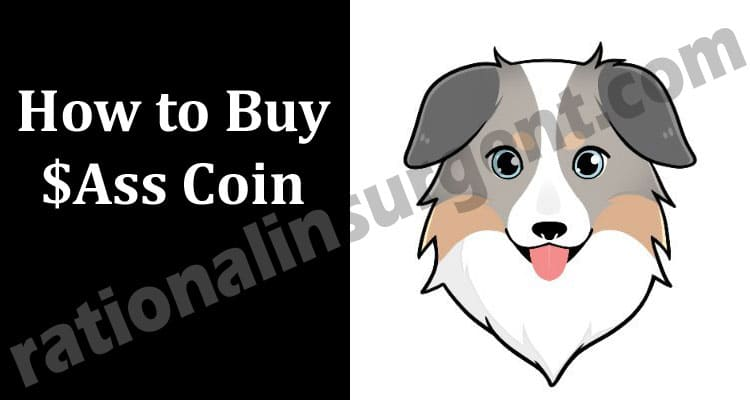 How to Buy $Ass Coin 2021