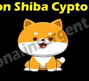 Jomon Shiba Cypto Coin 2021