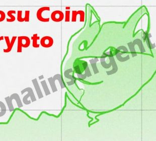 Kabosu Coin Crypto {May} Get Valuable Insight Here!