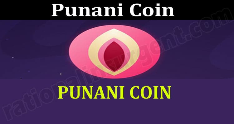 Punani Coin (May) Chart, How to Buy Contract Address