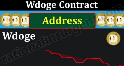 Wdoge Contract Address {May} Explore About The Coin!