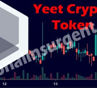 Yeet Crypto Token (May 2021) Get The Useful Information!