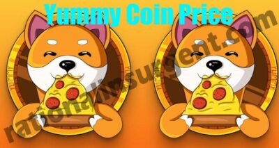 Yummy Coin Price (May) Coin Price, How To Purchase It