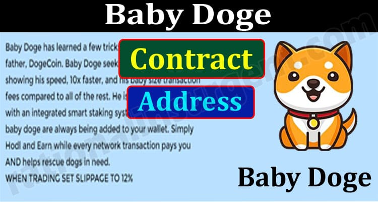 Baby Doge Contract Address {Jun} An Investment Option!