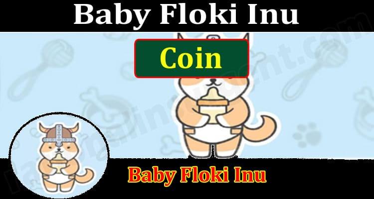 Baby Floki Inu Coin 2021.