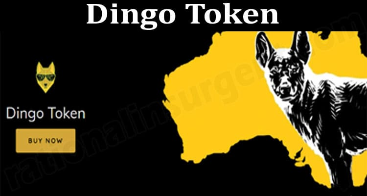 Dingo Token {June 2021} Price, Coin Chart – Read & Know!