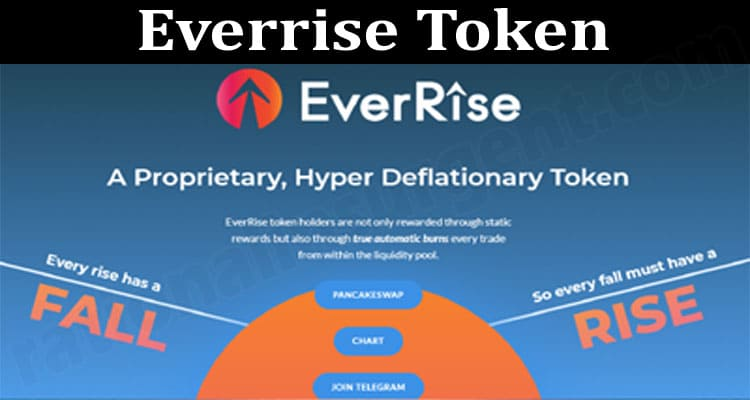 Everrise Token (June) Price, Prediction, How To Buy!