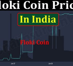Floki Coin Price In India (June 2021) Chart, How To Buy