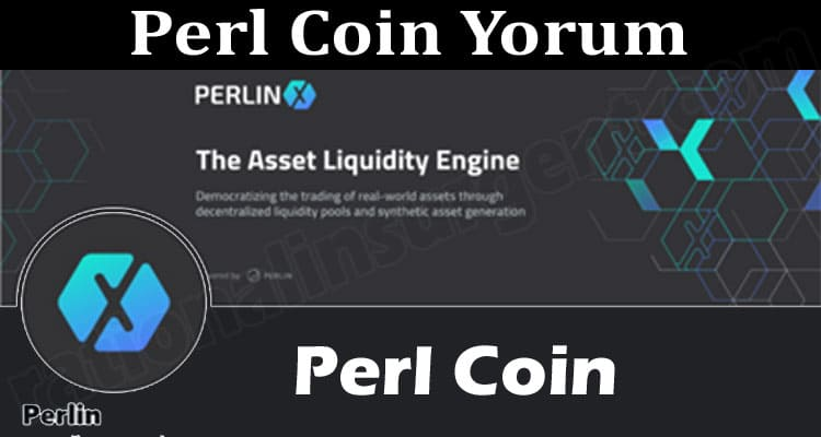 Perl Coin Yorum (June) Check The Detailed Report Here!