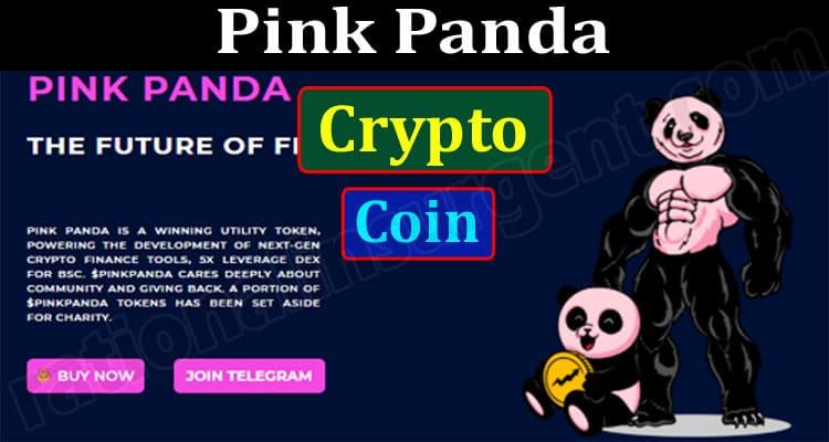 Pink Panda Crypto Coin {Jun} Read Regarding Coin Price!
