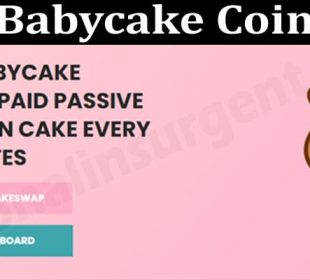 About General Information Babycake-Coin