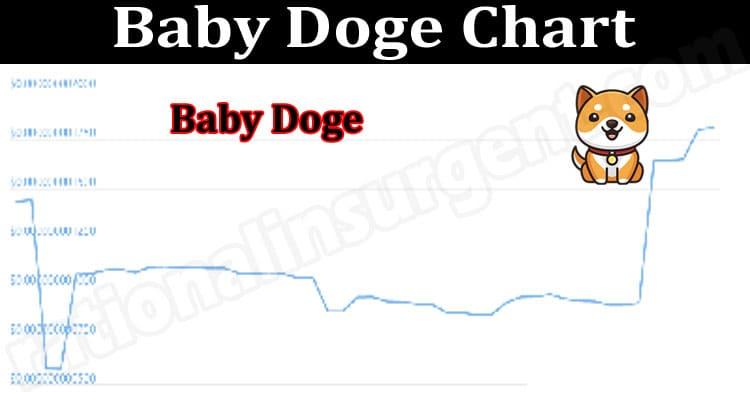 Baby Doge Chart 2021.