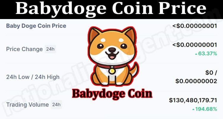 Babydoge Coin Price 2021.