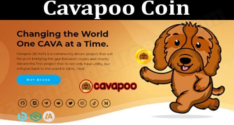 Cavapoo Coin (July) Price, Chart, & How To Buy