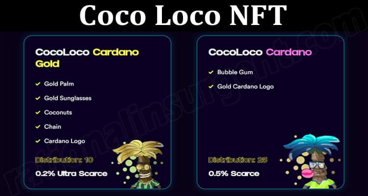 About General Information Coco Loco NFT