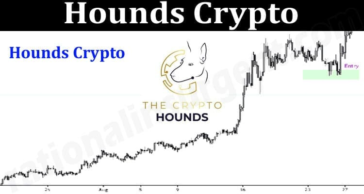 About General Information Hounds Crypto