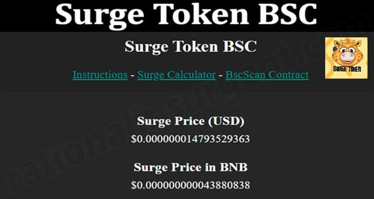 About General Information Surge-Token-BS