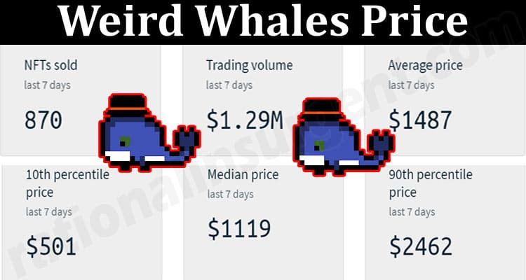 About General Information Weird Whales Price