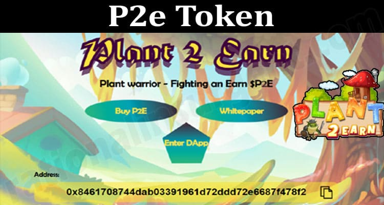 All About General Information P2e Token