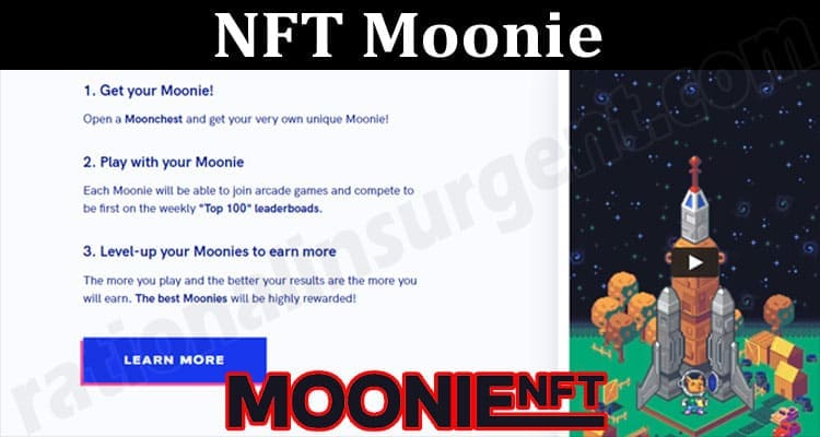 About General Imformation NFT Moonie