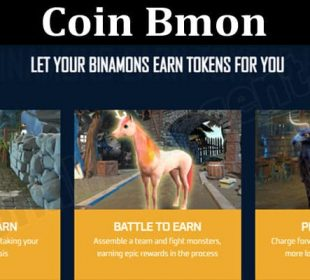 About General Information Coin Bmon