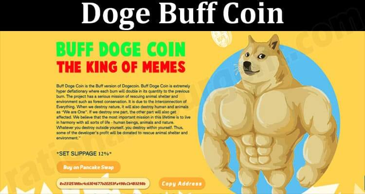 About General Information Doge Buff Coin