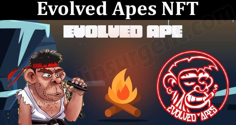 About General Information Evolved Apes NFT