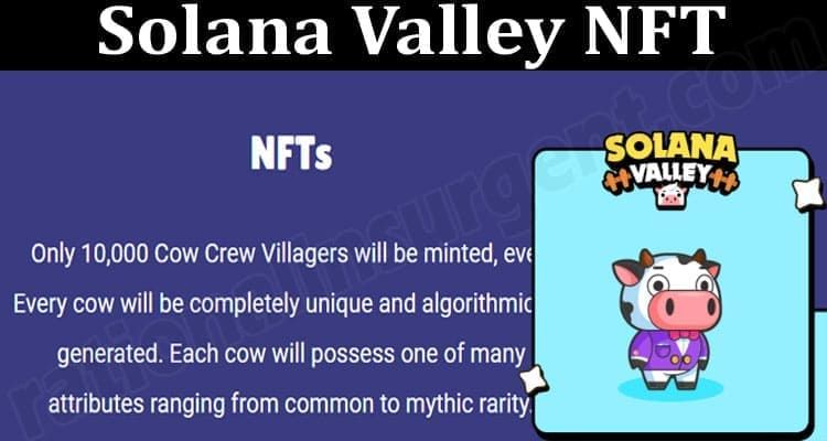 About General Information Solana Valley NFT