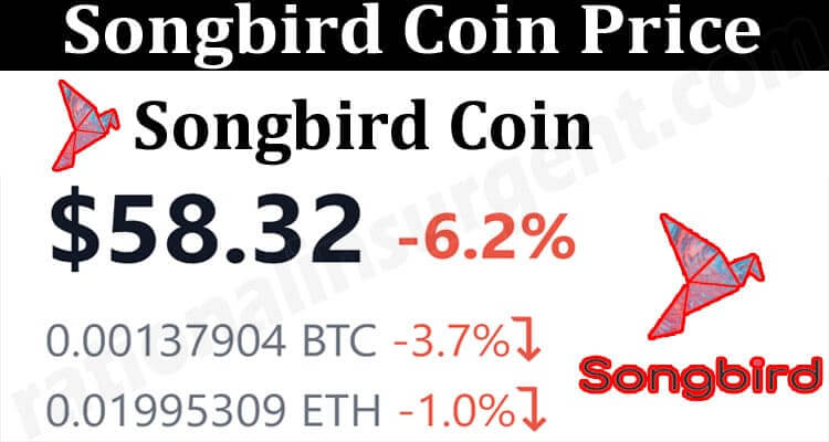 About General Information Songbird Coin Price