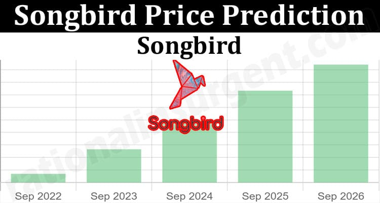 About General Information Songbird Price Prediction