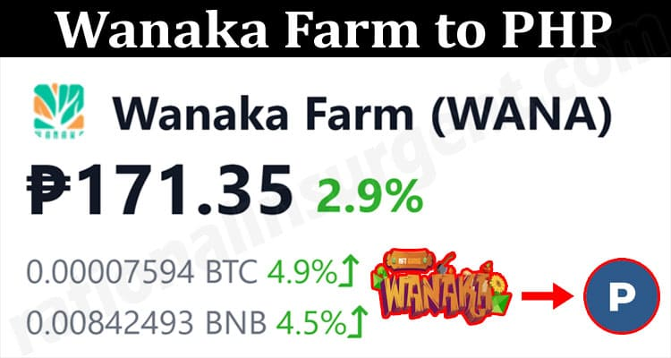 About General Information Wanaka Farm To PHP