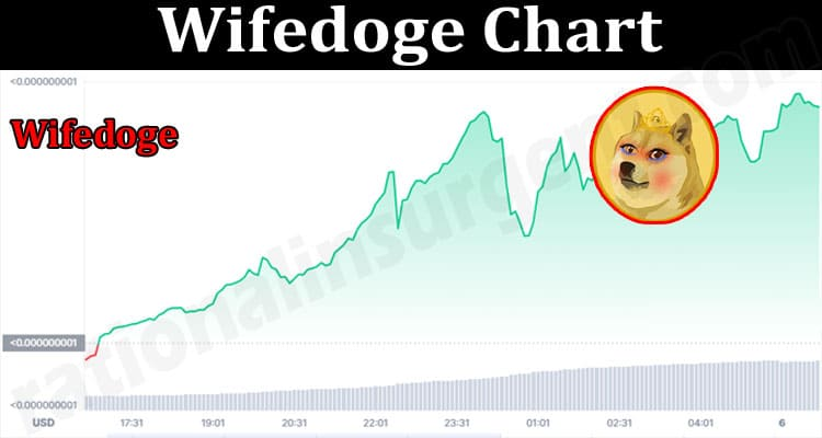 About General Information Wifedoge Chart