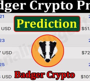 Abouit General Information Badger Crypto Price Prediction