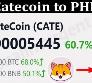 About General Information Catecoin to PHP