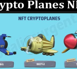 About General Information Crypto Planes NFT