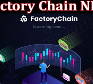 About General Information Factory Chain NFT