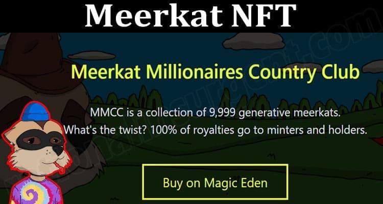 About General Information Meerkat NFT