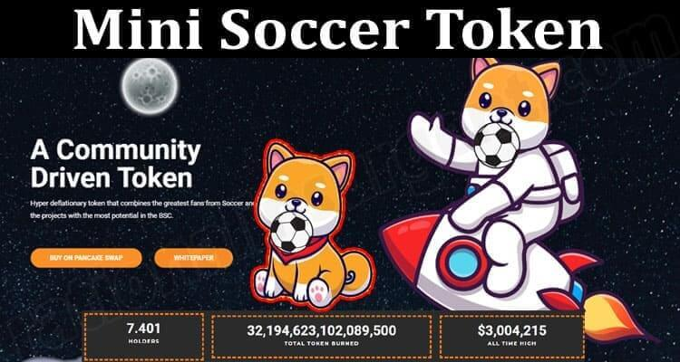 About General Information Mini Soccer Token