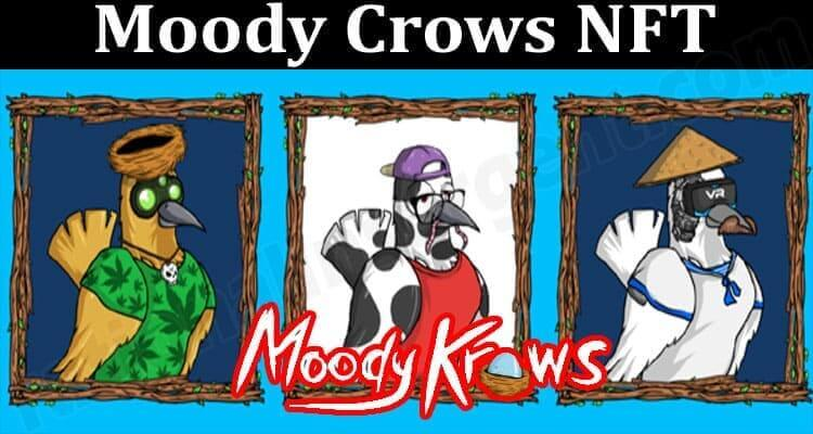 About General Information Moody Crows NFT