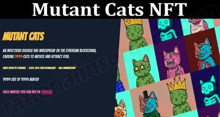 About General Information Mutant Cats NFT
