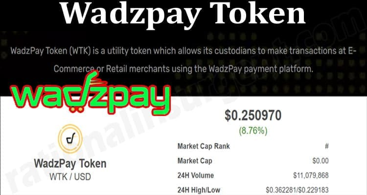 About General Information Wadzpay Token