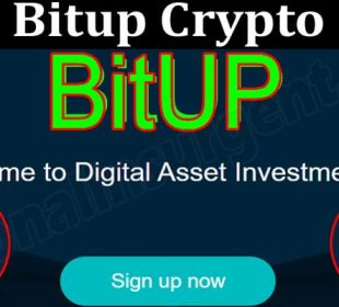 All About General Information Bitup Crypto